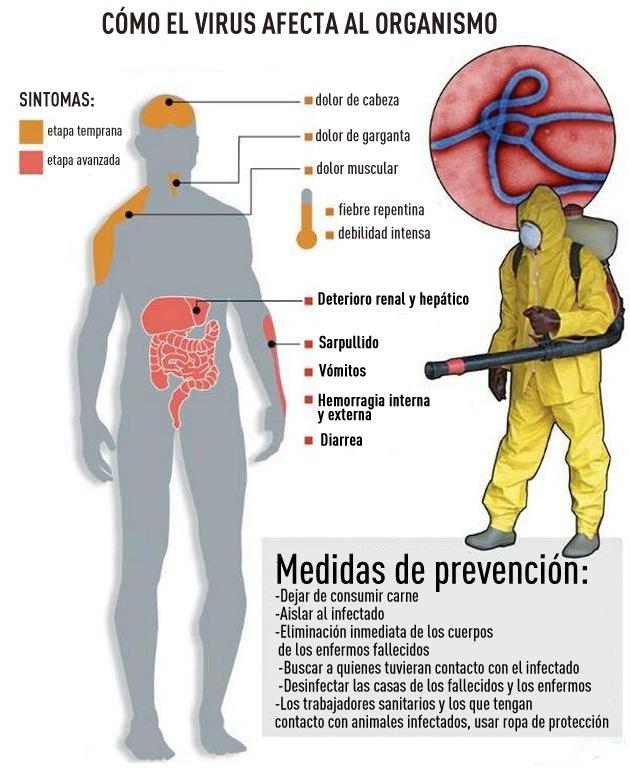 Infografía Ebola