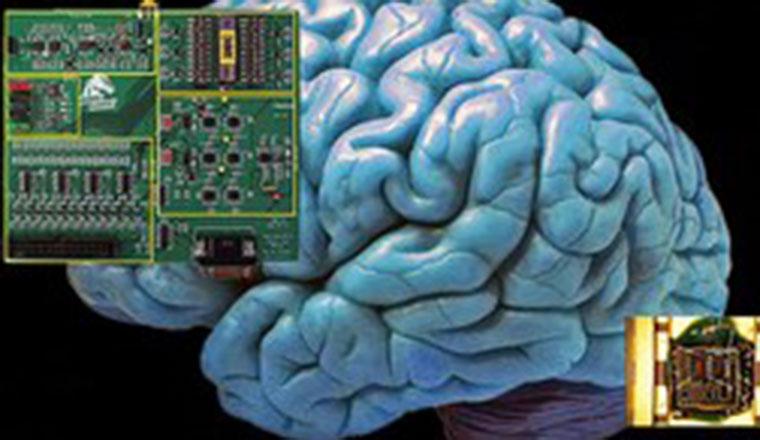 Crean chip inspirado en el funcionamiento del cerebro humano