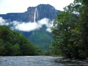 Exhuberancia del Amazonas en  Venezuela y Brasil. (Galería defotos).