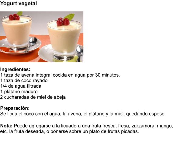 yougurt vegetal 02