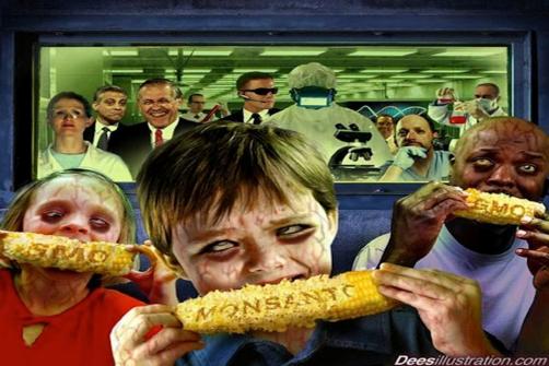 monsanto transgénicos maíz niños
