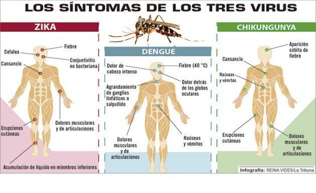 Zika 05