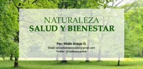 Maite Araujo Olivares: Parque Nacional Morrocoy, paisajes de ensueño, espectacularesplayas