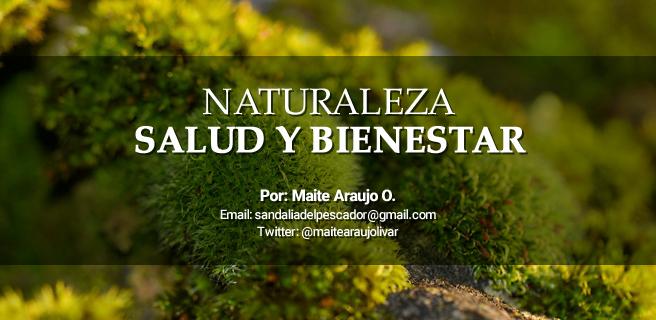 """Maite Araujo Olivares: """"Destrucción de la capa de ozono en el Amazonas por el A.M.O."""""""