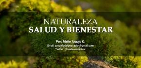 Maite Araujo Olivares: Biodiversidad en ecosistemas terrestres en América Latina en la mitigación del cambioclimático.