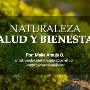 """Maite Araujo Olivares: """"Destrucción de la capa de ozono en el Amazonas por elA.M.O."""""""