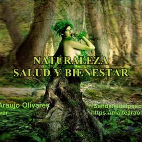 Maite Araujo Olivares: La Glucosa, la amiga energizante del cerebro (+Videos)