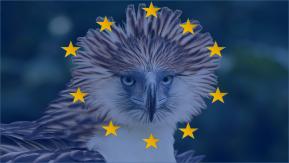 La prohibición de la UE de importar aves exóticas reduce el comercio mundial un90%
