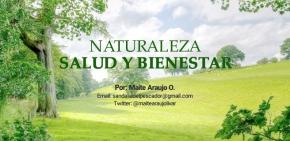 Maite Araujo Olivares: Celebramos los 55 años del Parque Nacional Cueva de la Quebrada delToro.
