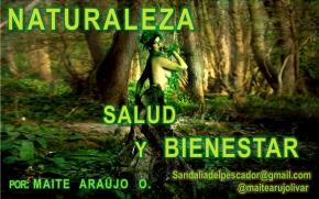 Maite Araujo Olivares: Falcón celebró los 45 años del Parque Nacional Médanos deCoro