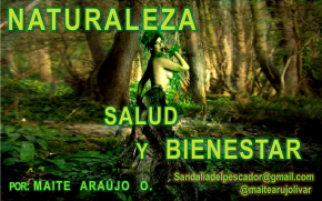 Maite Araujo Olivares: Amemos al planeta: Iluminémoslo sincontaminantes