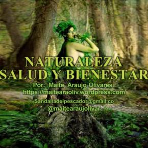 Maite Araujo Olivares: Ambiente en las playas turísticas deVenezuela+Video